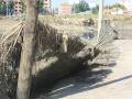 obrenovac8.jpg